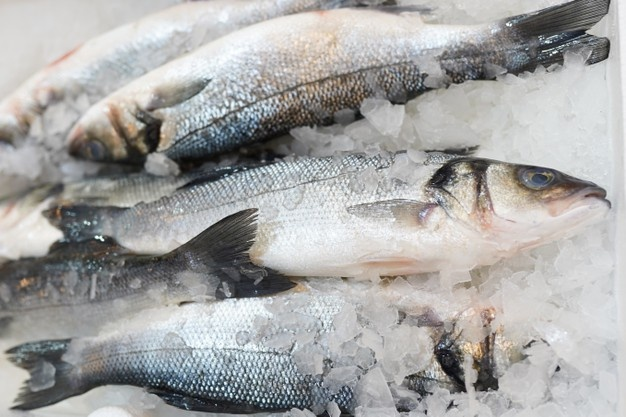 Wholesalers cut prices for several types of frozen fish