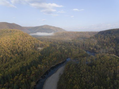 """The court canceled the deal on the sale of land of the national park """"Bikin"""" in Primorye"""