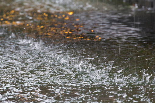 Emergencies Ministry warns of heavy rains on Sakhalin