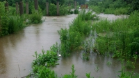 Water level rises rapidly in the rivers of Primorye