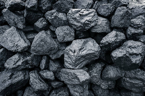Pulse of Coal - August 14