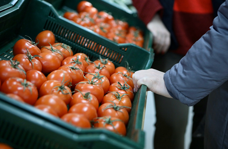 Vegetable collapse: Far East is left without available products