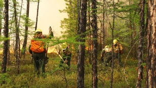 Emergency mode introduced in two areas of the Angara region due to forest fires