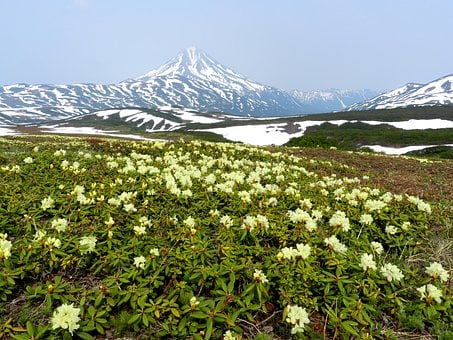 Every fourth tourist doesn't like prices in Kamchatka