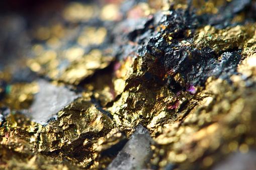 Gold mining increased in the Magadan region