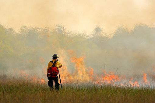 Another 360 million rubles will be allocated to fight forest fires in Yakutia