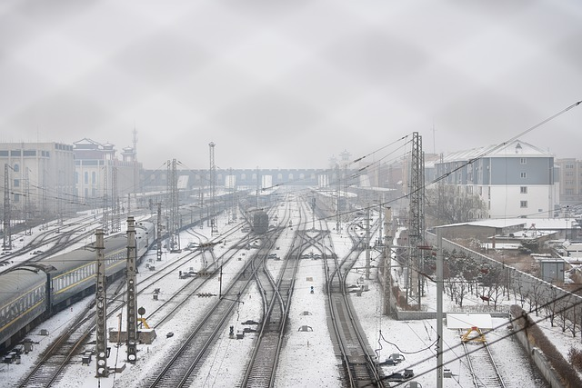 Russia has suspended passenger traffic by rail with China
