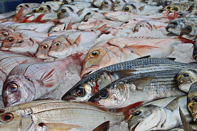 Russia increased the supply of pollock in the United States