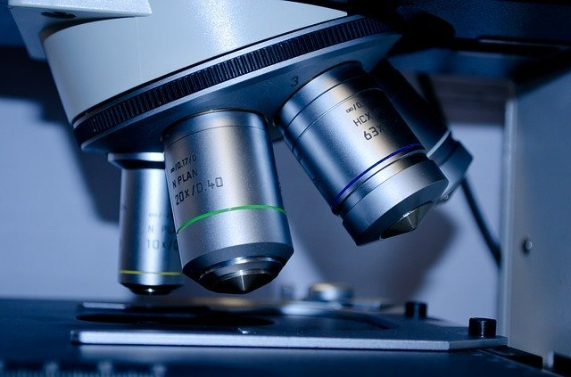 Improved tests for the diagnosis of coronavirus received in Kamchatka