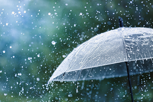 Heavy rains for three days will spoil the weather in the Khabarovsk Territory