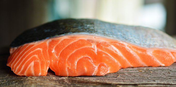 Chukotka enterprises have already harvested more than 140 tons of salmon