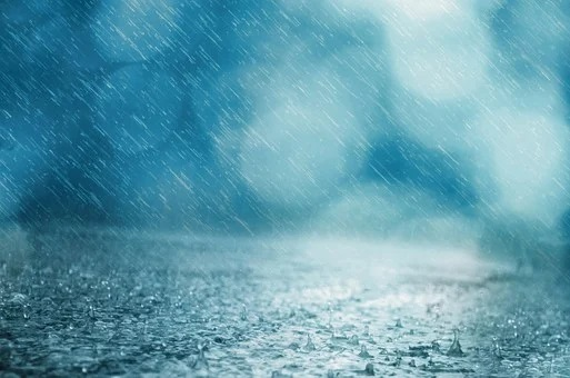 Ministry of Emergency Situations warned of heavy rains in the EAO