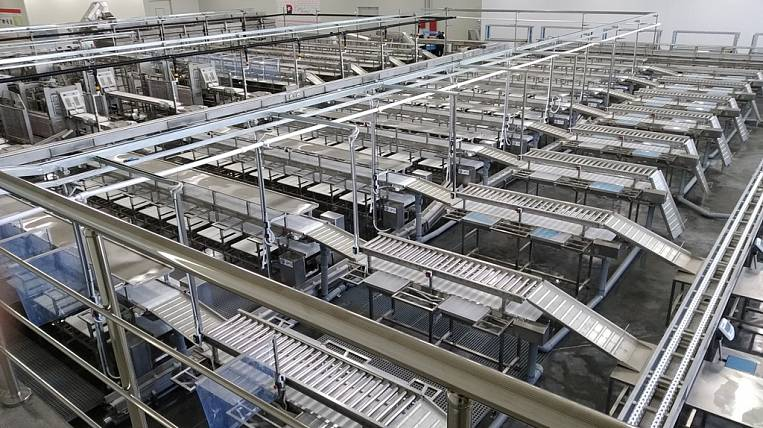 The largest fish processing complex in the region was opened in Primorye
