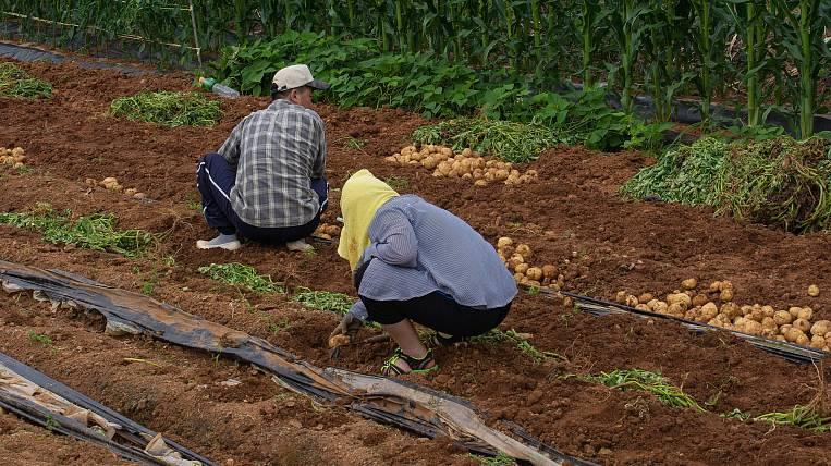 Taxes for farmers reduced in the EAO