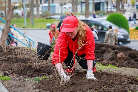 RRPK employees planted a green alley for Victory Day
