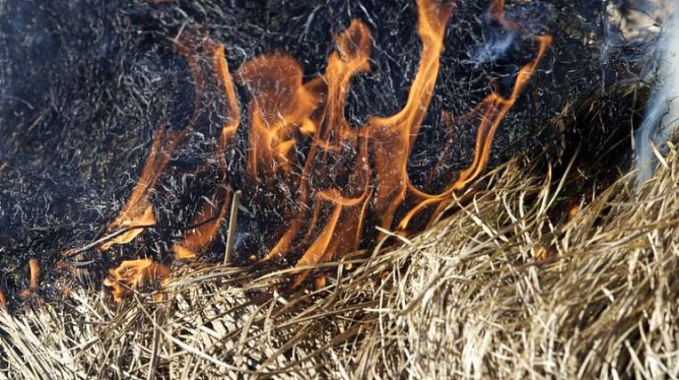 Fines for arsons plan to increase in Transbaikalia