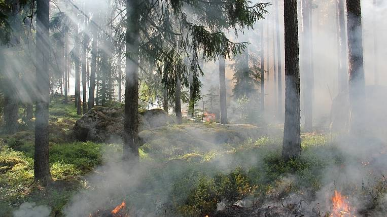 Emergency mode introduced in northern Kamchatka due to 11 forest fires