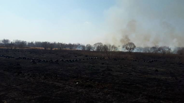 The airfield named the cause of the crash near Khabarovsk
