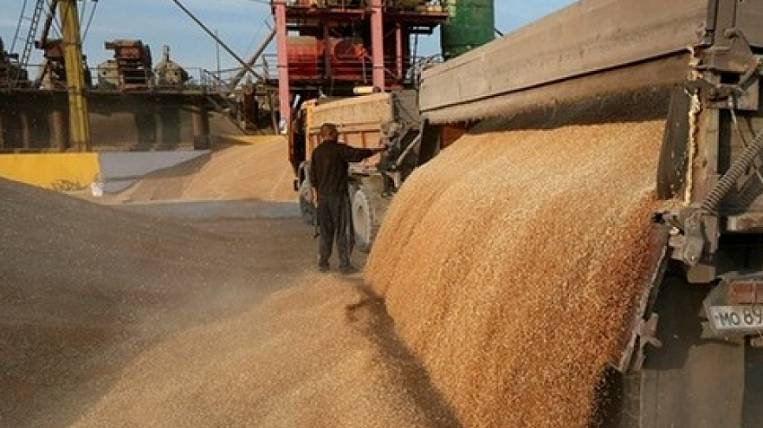 Grain terminal on the border with China will be built in Transbaikalia