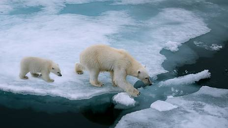 Who will answer for the climate?
