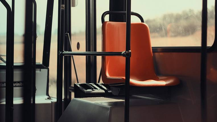Ministry of Transport: passenger bus fleet in the Far Eastern Federal District is one third worn out
