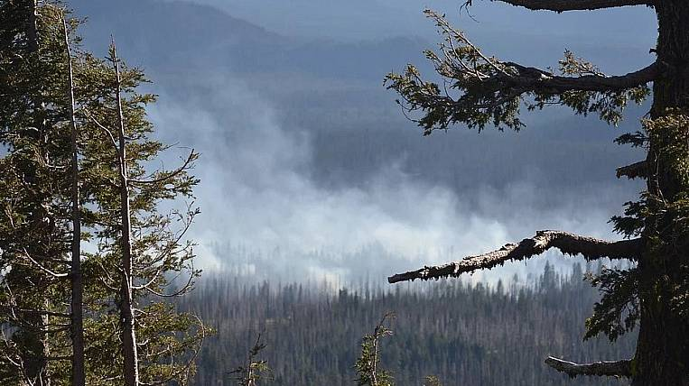 The ban on staying in the forests extended in Transbaikalia