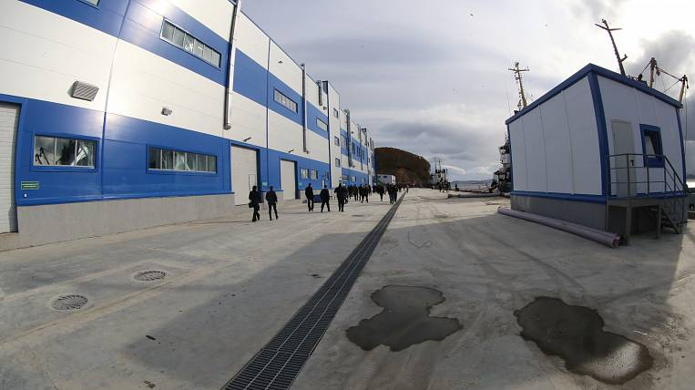 In Kamchatka opened a fish processing plant