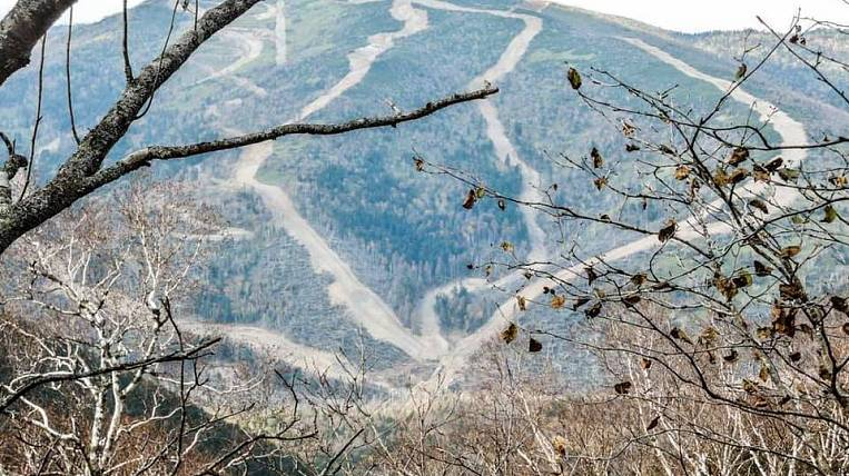 Environmentalists began to fight in court for a ban on cutting forests on Mount Ostroy