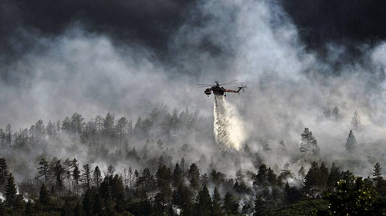 More than two thousand hectares of forest burn in the Far East