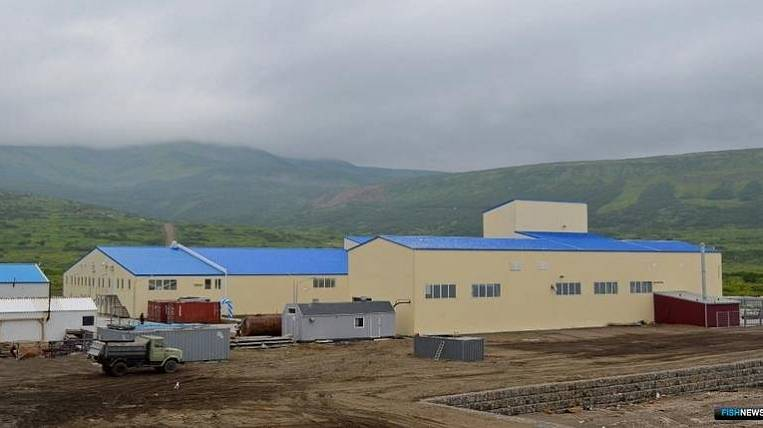 New fish processing plant opened in the Kuril Islands