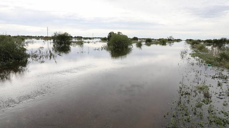 The damage to farmland from the flood was estimated at 164 million rubles in the Jewish Autonomous Region