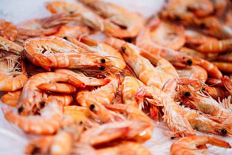 VAT will be reduced for a number of seafood