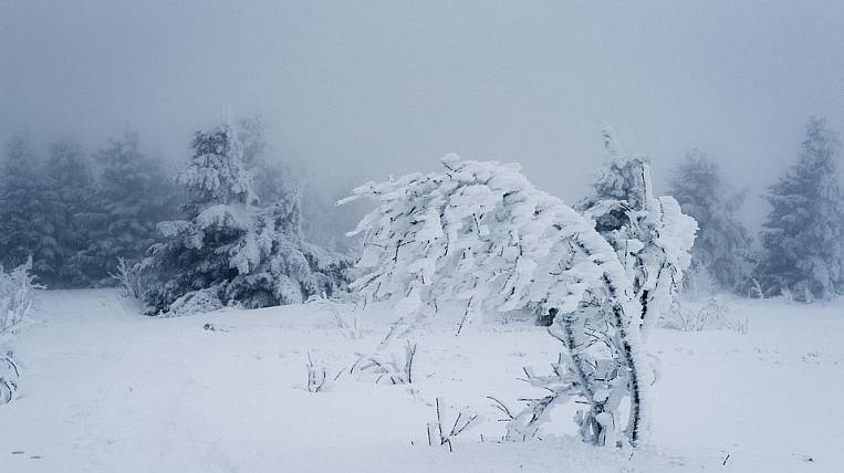 Forecasters called the time of a blizzard in Vladivostok