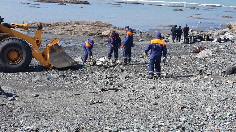 The main version of the An-26 disaster in Kamchatka was named by the media