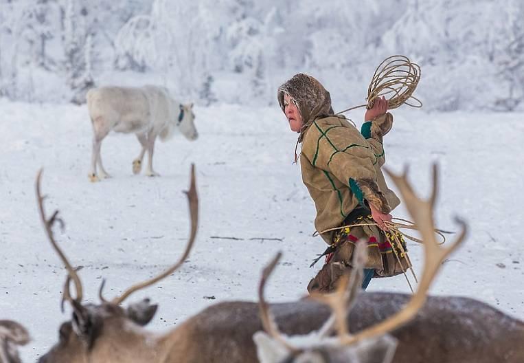 Agree with reindeer herder