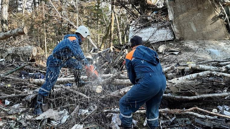 Rescuers completed work at the crash site of An-26 near Khabarovsk