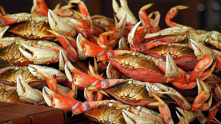 Russian crab exporters lose millions due to coronavirus in China
