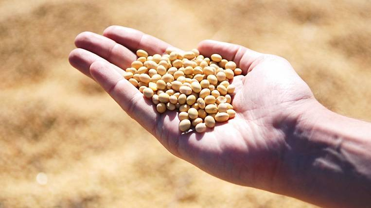 They want to engage in deep processing of soybeans in the JAO