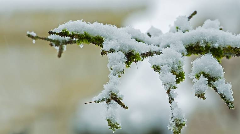 Snow and strong wind will return to Khabarovsk Territory