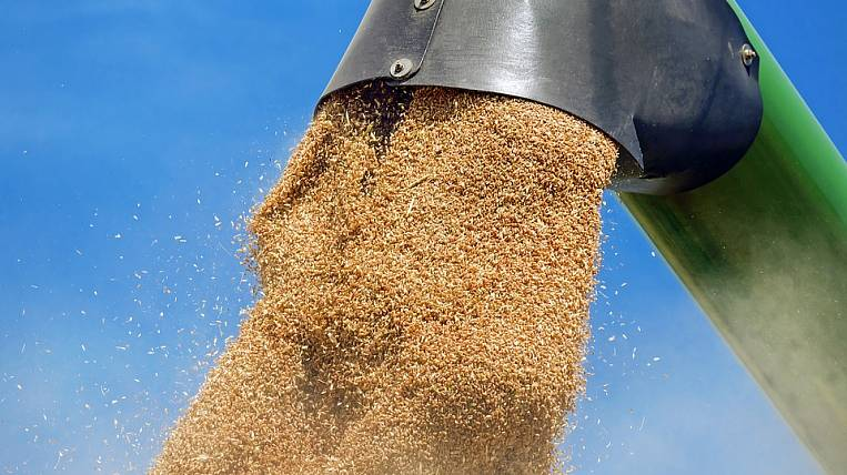Grain terminal will be built in Primorye, a new resident SPV