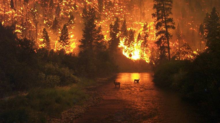 Emergency mode due to forest fires introduced in the area in the Irkutsk region