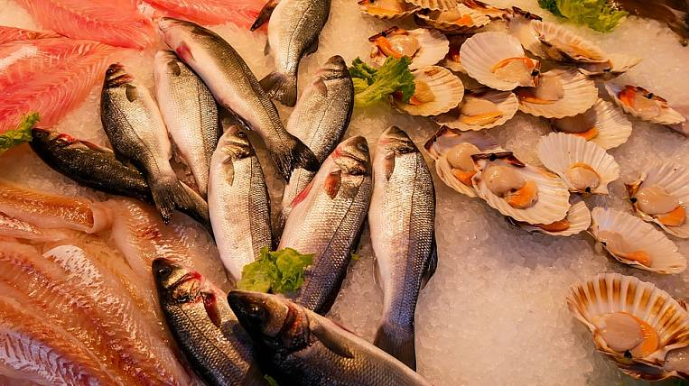 In Primorye, the deadlines for the delivery of the fish market are shifting