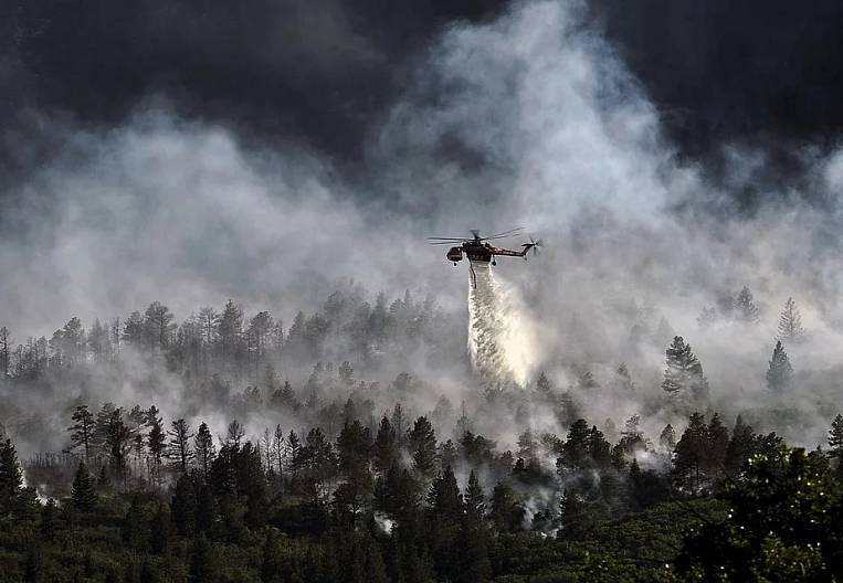 Flights and 900 patrols: Amur Region prepares for the forest fire season