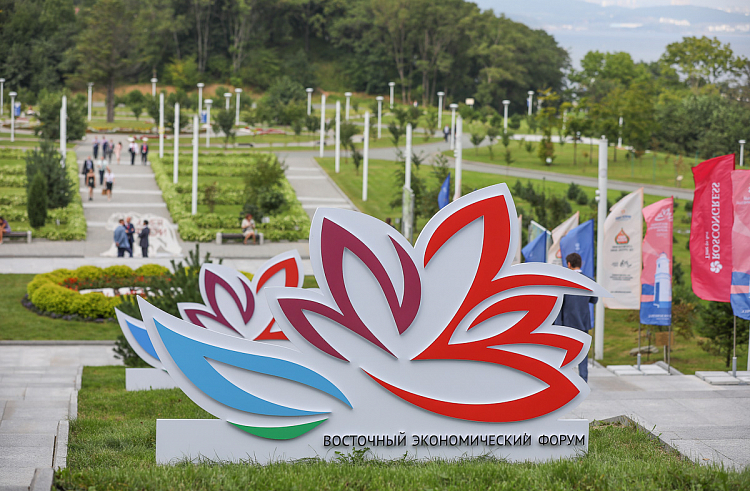 WEF money will be redirected to the needs of Primorye