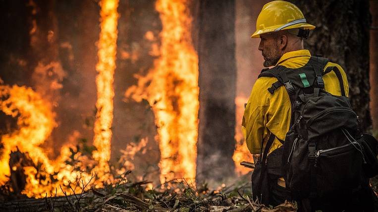 About 600 hectares of forest burns in Chukotka