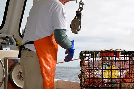 The Accounts Chamber has questions about crab fishing auctions