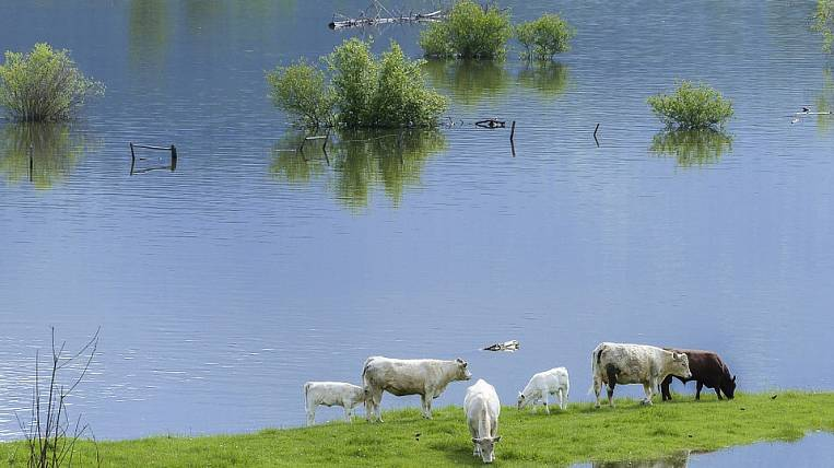 On the elimination of the consequences of the flood in the Angara region gave 10 days