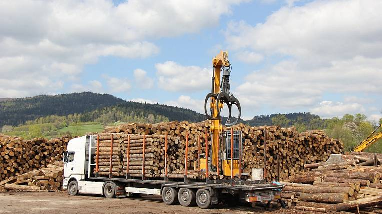 Mishustin intends to change the forest industry development strategy