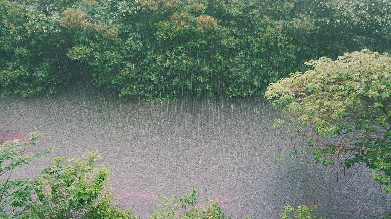 Showers with thunderstorms and wind will fall on the Amur region