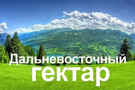 The boundaries of the Far East hectares in the Khabarovsk Territory will be revised